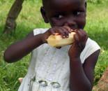 Uganda 2013